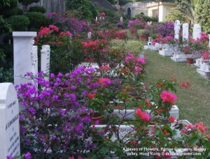 A Haven of Flowers, Parsee Cemetery, Happy Valley, Hong Kong