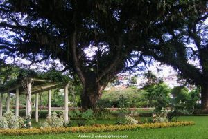 View inside Ambon War Cemetery, Indonesia