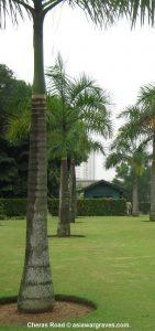 View inside Cheras Road War Cemetery, Malaysia